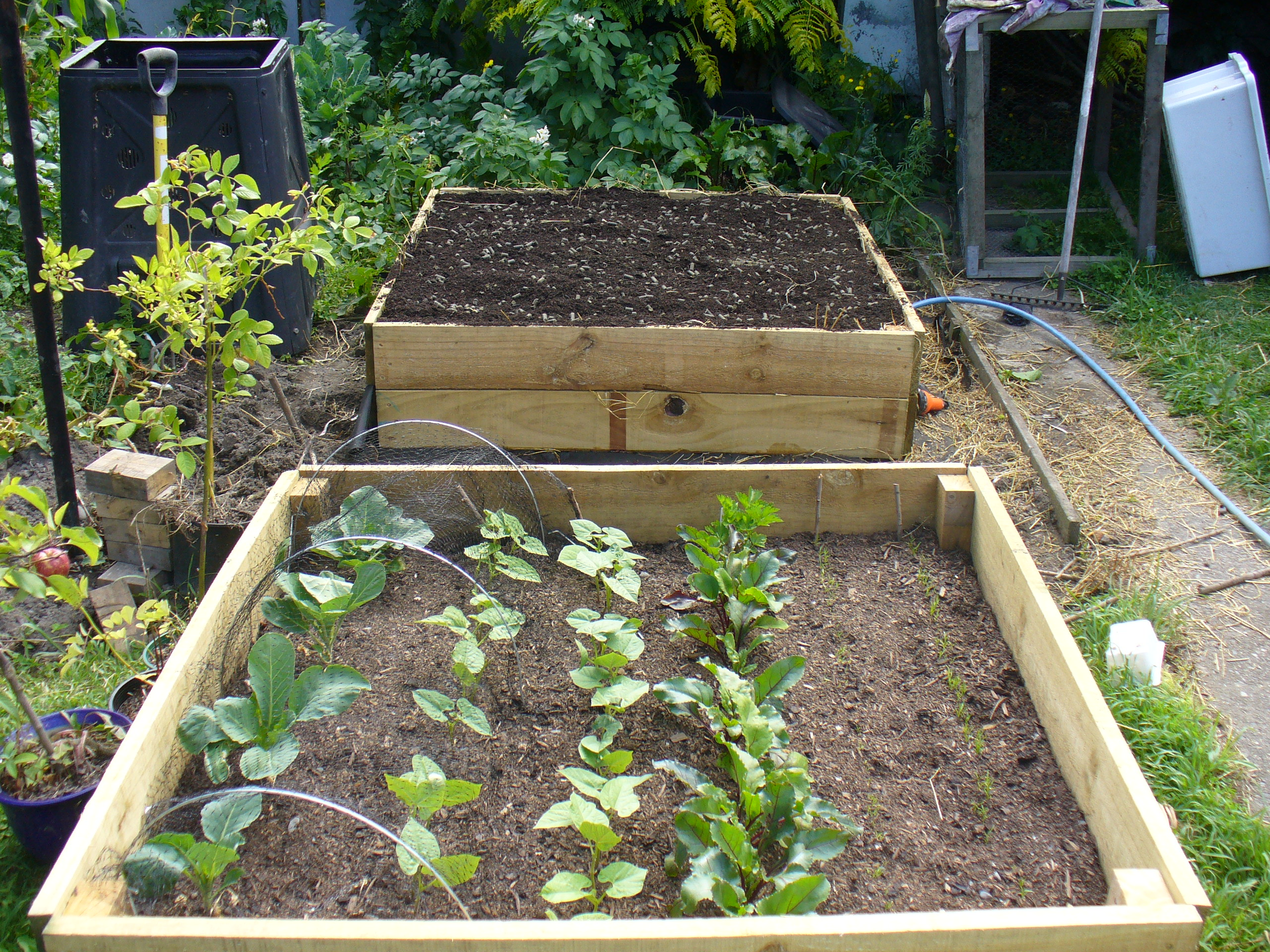 How to build a Raised Vegetable Garden Gentle by Nature